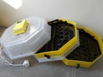 Tojáskeltető gép C2x5-FHP (emeletes) hofokszabályzóval , forgatómuvel , páramérővel (csirkekeltető)
