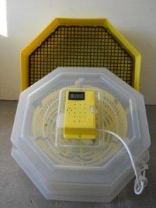 Tojáskeltető gép C5-H hőfokszabályzóval, hőmérséklet kijelzővel (csirkekeltető)