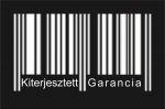 Kiterjesztett garancia